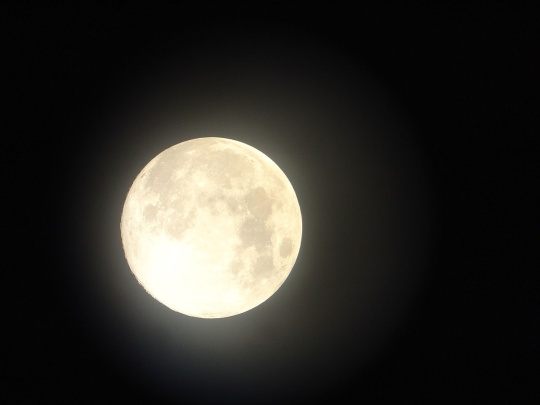 full moon image stock photo